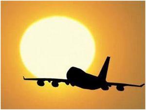 vuelo de la vida